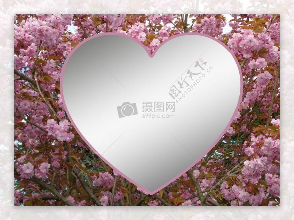 粉色花海的心形图案